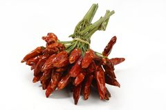Bunch of Dried chili peppers Royalty Free Stock Image