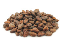 Bunch of dried cocoa beans Stock Image
