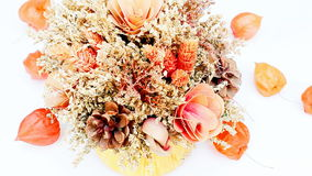 Bunch of dried flowers stock video footage