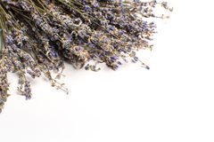 Bunch of dried lavender royalty free stock photo