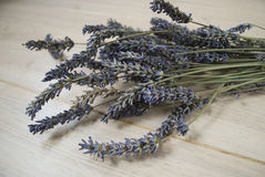 A bunch of dried lavender flowers on a wooden background. Royalty Free Stock Photos