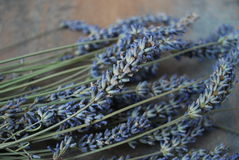 A bunch of dried lavender flowers on a wooden background. Royalty Free Stock Photo