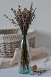 Bunch of dried lavender herb and lavender flowers Royalty Free Stock Image
