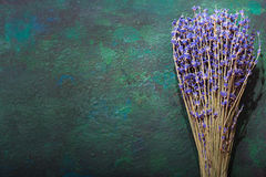 Bunch of dried lavender Royalty Free Stock Photos