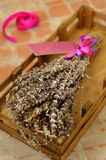 Bunch of dried lavender in wooden tray Royalty Free Stock Image