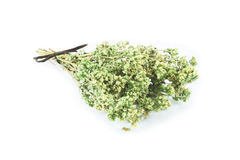 Bunch of dried marjoram Royalty Free Stock Photos