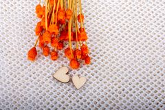 Bunch of dried orange color flower and heart shaped. Bunch of dried flower and heart on white background royalty free illustration