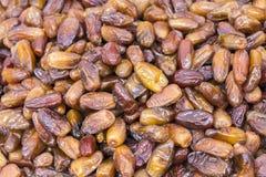Bunch Dried sweet dates Fruit Stock Photos