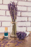 Bunch of dry cut lavender on wooden table. White bricks background, selected focus. Stock Photography