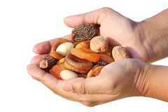 Bunch of dry fruits in a woman's hand Stock Photography