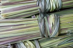 A bunch of dry green lemongrass stock images