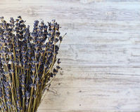 A bunch of dry lavender. Against the background Stock Photo