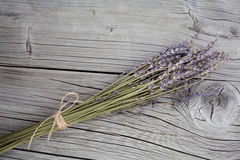 Bunch of dry lavender flowers Stock Photo