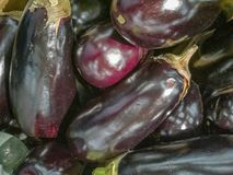 A bunch of eggplants on the table stock photos
