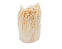 Bunch of enoki mushrooms. Royalty Free Stock Photography
