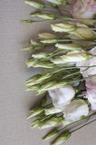 Bunch of eustoma flower lying on sack cloth Royalty Free Stock Photography