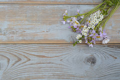 Bunch of fieldflowers,daisies, buttercups, Pentecostal flowers, dandelions on a oldwooden background with empty copy space Royalty Free Stock Image