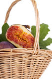 Bunch of figs in a basket  on white Stock Image