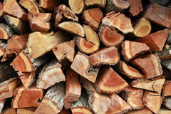 Bunch of firewoods. Fire wood stock for winter Royalty Free Stock Photos