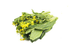 Bunch of floral choy sum green vegetable popular among the Chine Stock Photos