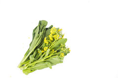 Bunch of floral choy sum green vegetable popular among the Chine Royalty Free Stock Photo