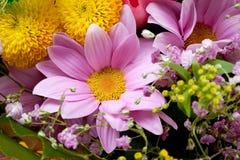 Bunch of flowers. Closeup macro royalty free stock photos