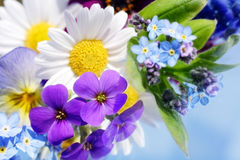 Bunch of flowers Stock Image