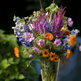 Bunch with flowers Royalty Free Stock Photography