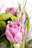 Bunch of flowers. On the white Royalty Free Stock Image