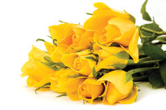 Bunch of flowers. Yellow flowers on the white background royalty free stock photography