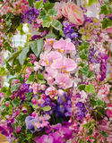 Bunch of flowers Royalty Free Stock Image