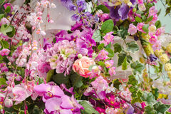 Bunch of flowers Royalty Free Stock Photo