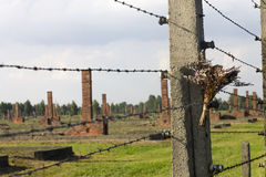 A bunch of flowers on a barbed wire fence in Auschwitz Stock Images