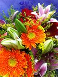 A bunch of flowers. A bunch of beautiful and bright flowers,You can give your mother Stock Image