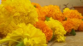 Bunch of Flowers. stock photography