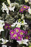 Bunch of flowers , closeup Stock Photography