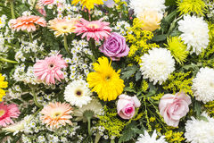 Bunch of flowers Stock Photography