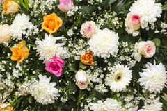 Bunch of flowers Stock Images