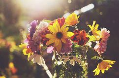 Bunch of flowers in glass jar. Bunch of autumn flowers in glass jar in sunlights Stock Photography