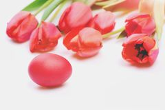 Bunch of flowers near pink Easter egg. Easter symbols concept. Easter eggs Bunch of flowers near pink Easter egg. Easter symbols concept. Tulips in pink or red Stock Photography