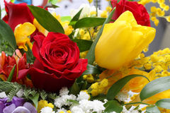 Bunch of flowers with roses and tulips Royalty Free Stock Photos