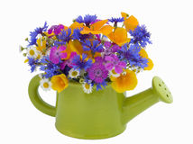 Bunch of flowers in the  watering pot Stock Photography
