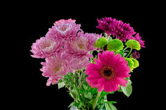 Bunch of Flowers which contain Chrysanthemums and Daisy. Isolated on a black background Royalty Free Stock Photos
