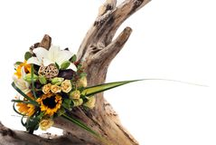 A bunch of flowers on white on tree stump Royalty Free Stock Photo