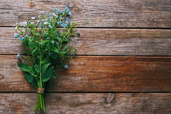 Bunch of Forget-me-not flowers Stock Image