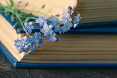 Bunch of forget-me-nots flowers and very old book Royalty Free Stock Photo