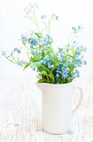 Bunch of forget-me-nots flowers Stock Image