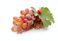 The bunch of the fresh appetizing grapes Stock Photos