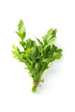 Bunch fresh arugula. Isolated on a white background stock photography