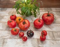 A bunch of fresh arugula salad and red tomatoes plan on a wooden brick background stock image